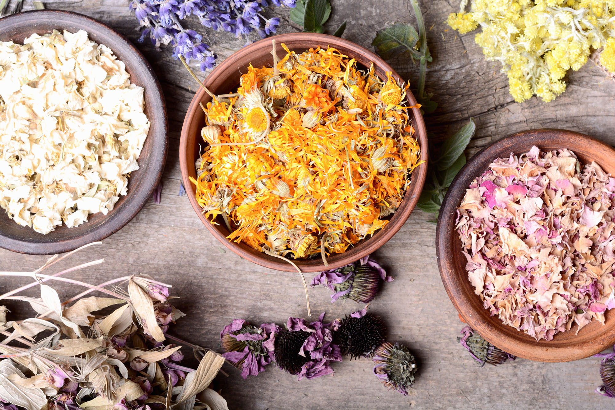 Herbal Health Workshop: The Yoga of Teas, Baths and Aromatherapy